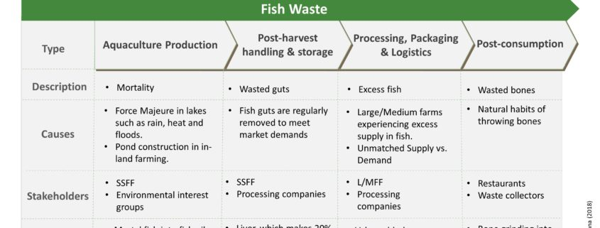 Fish waste in ghana